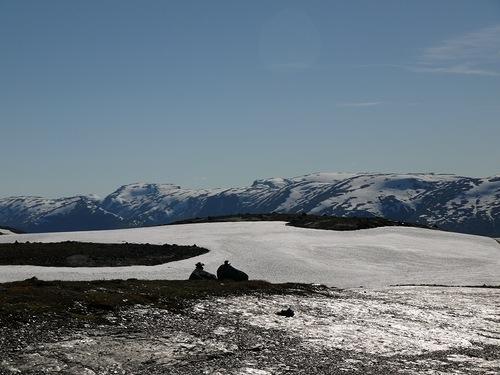 Как я провел этим летом. Норвегия. Фотоотчет. Июнь 2014
