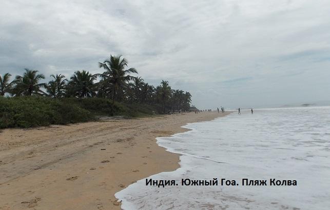 Пляж колва гоа отзывы фото