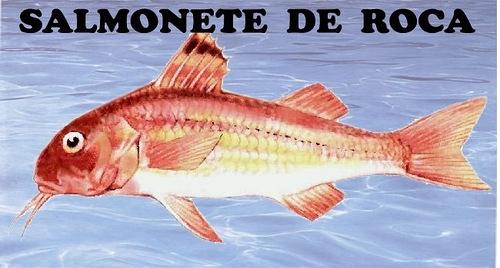 Рыба и морепродукты – словарь, сезонность, особенности