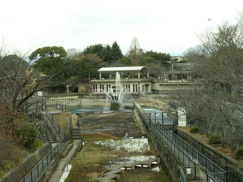 Япония, такая разная зима, 2010 год (фототрафик)