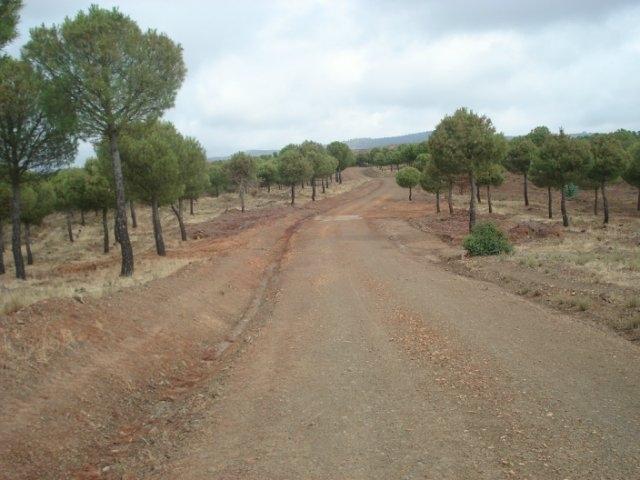 1200 км пешком до Атлантики или Camino Via de la Plata