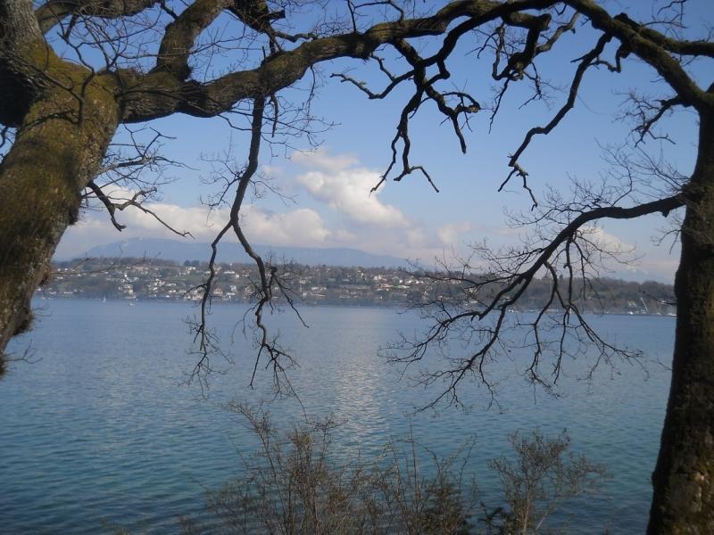 Швейцария - не съесть, но надкусить. Сьон, Лозанна и Женева за 2 дня