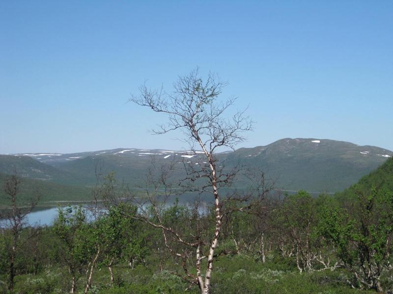 Treriksröset - стык границ Финляндии, Швеции и Норвегии