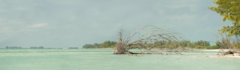 Кубинские настроения или мы опять на Карибах