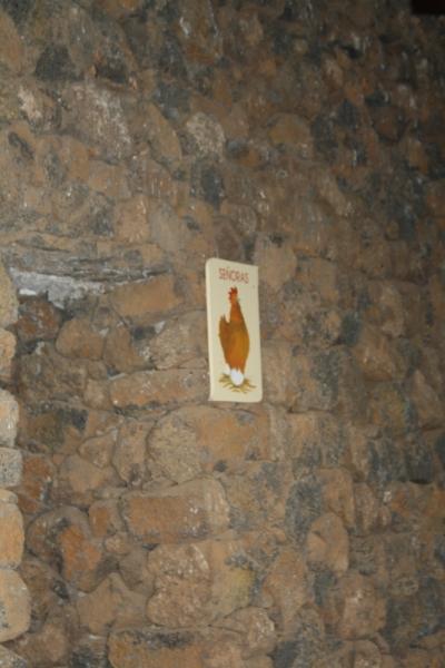 Незабываемый отдых на Лансароте и Фуэртевентуре.  Январь 2015 года