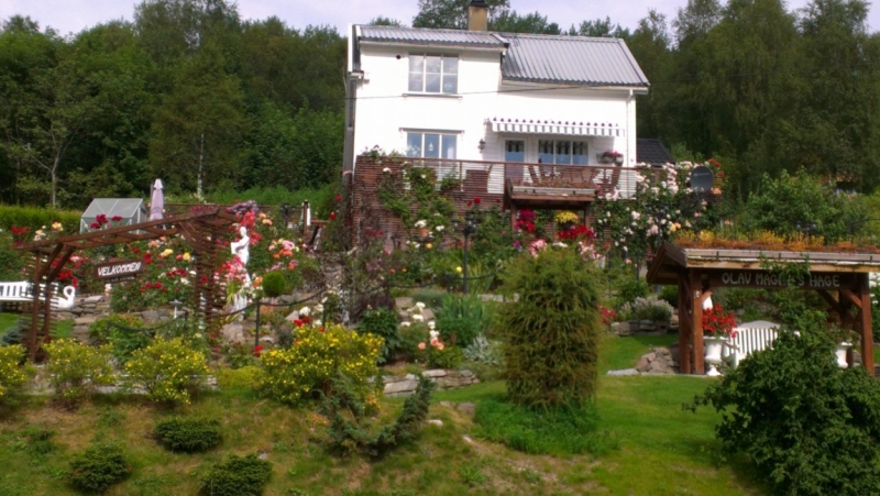 Вопросы после путешествия по Норвегии