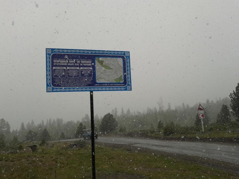 Автотур по Горному Алтаю: Акташ – Улаганский перевал – Мультинские озера