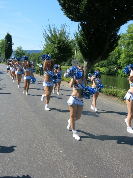 Парад цветов в немецком городе Бад Эмс