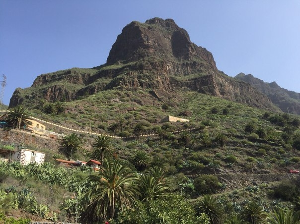 Ноябрьские денечки на Тенерифе