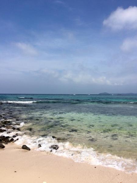 Контадора-Жемчужные острова  из Панама-сити