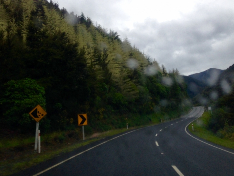 17 мгновений новозеландской весны