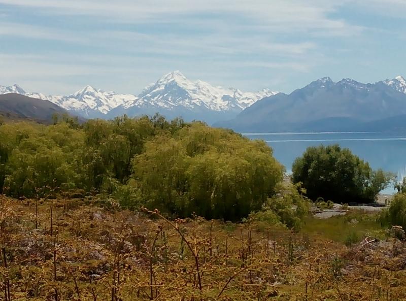 Новая Зеландия: три недели на краю света