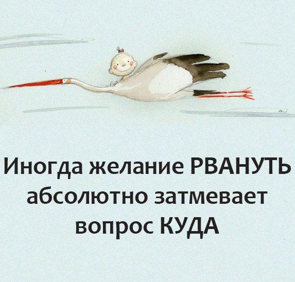 Отказались ли от поездок из-за курса рубля?