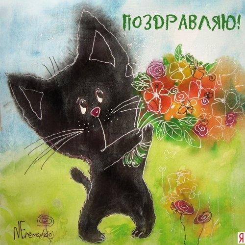 Поздравление кота с днём рождения