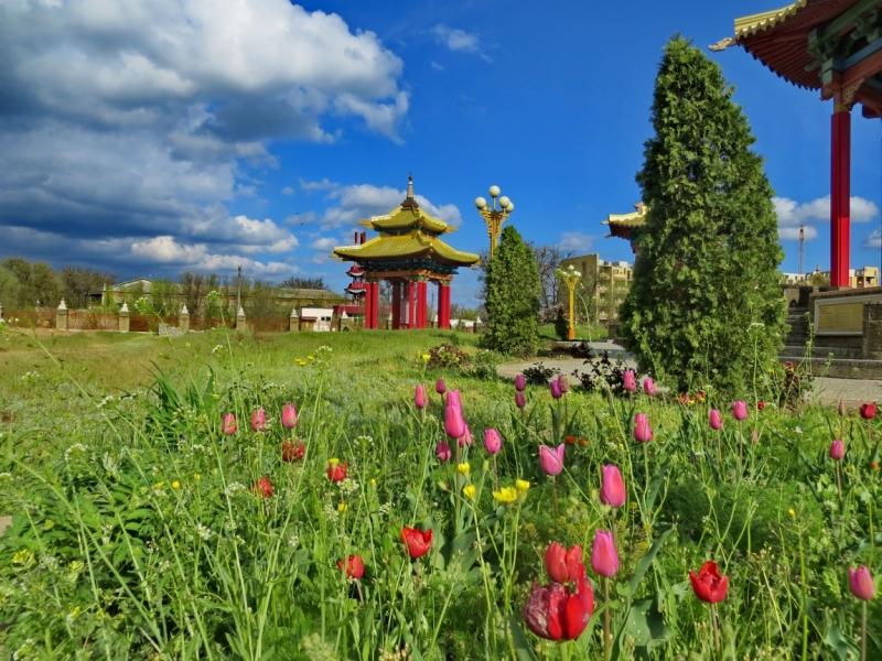 Тур в Элисту на цветение тюльпанов с выездом из Саратова