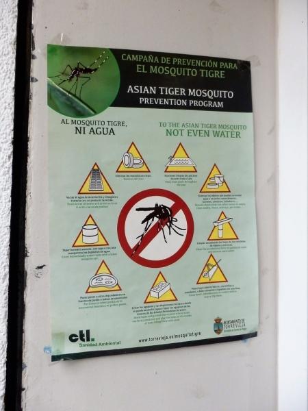 Азиатский тигровый комар в Европе