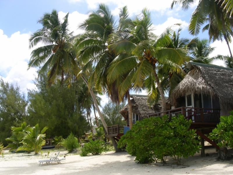 50 оттенков бирюзы на Островах Кука