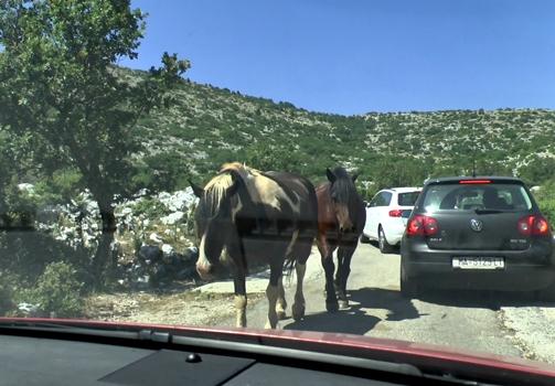В черногорию на машине из москвы