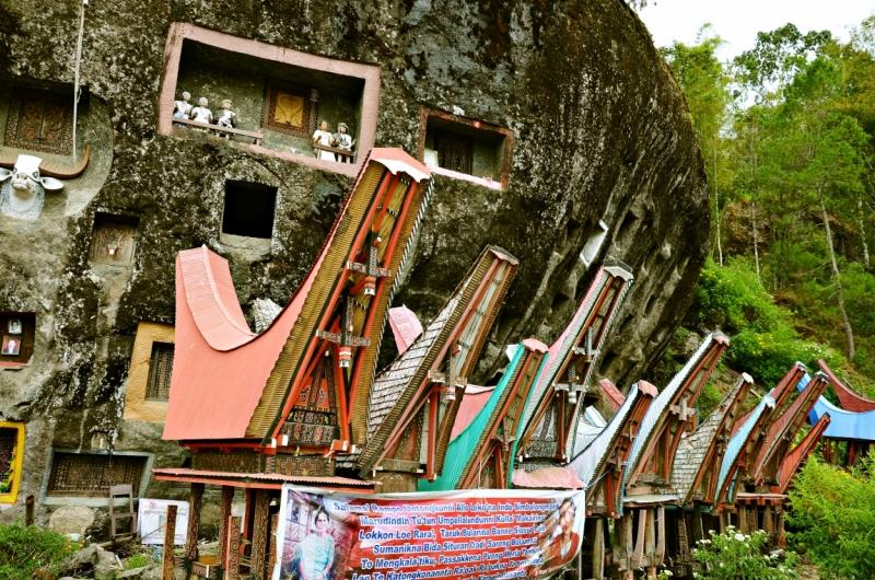 Со вкусом по Индонезии, или в поисках чудес. Ява, Сулавеси. Январь – февраль 2016 г.