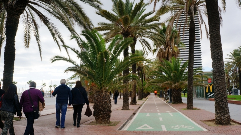 Чуть-чуть Барселоны + чуть-чуть Тенерифе (ноябрь)