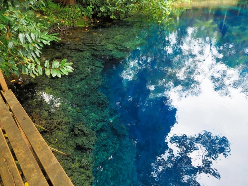 Вануату авг 2016 - острова Тана и Эспирито-Санту