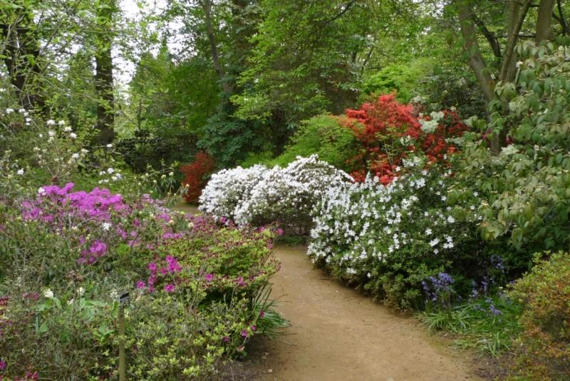 Любимые сады и парки Англии