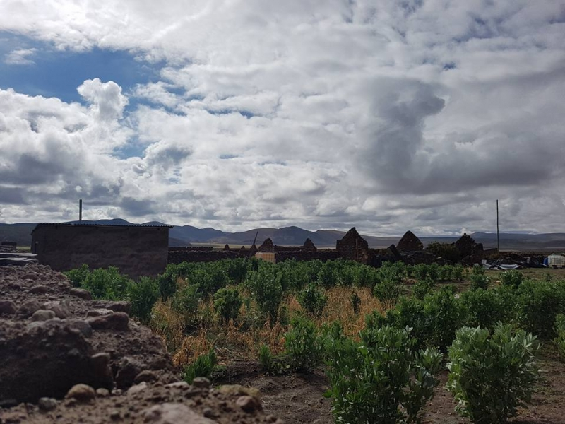 Парагвай. Неожиданная новая жизнь на краю Чако