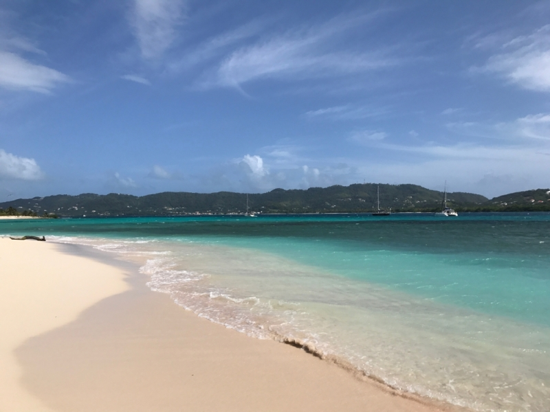 Карибский дневник. Яхтенное путешествие от Мартиники до Гренады.