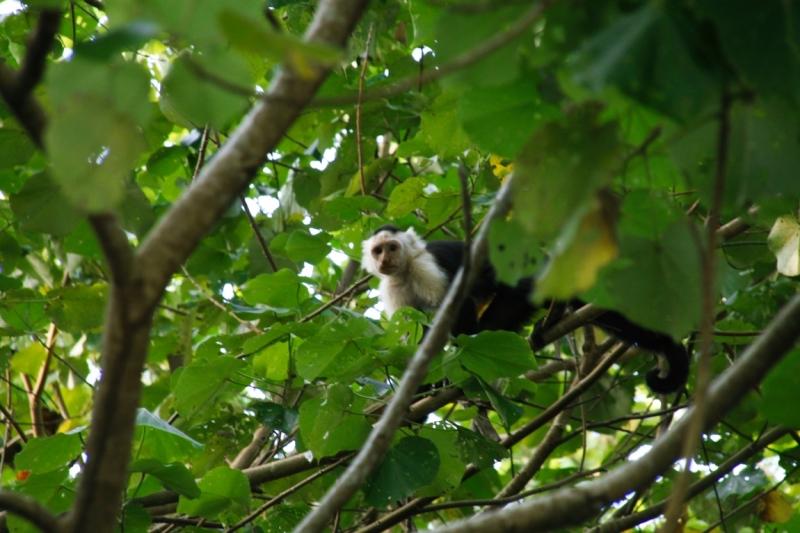 Подробный фотоотчет: Панама - Коста-Рика на авто за 2 недели