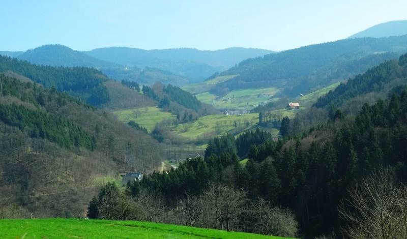 Четыре времени года в Шварцвальде. Весна 2017 (Эттенхайм, Эндинген-ам-Кайзерштуль, Брайзах-ам-Рейн, Трибергские водопады)
