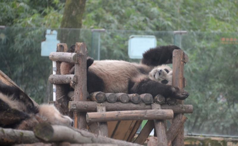 Шанхай, Хуаншань, Чжанцзяцзе.
