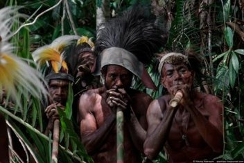 Немного о племени Фаю. Папуа. Индонезия