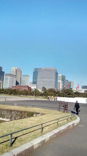 Япония - страна сакуры и заходящего солнца