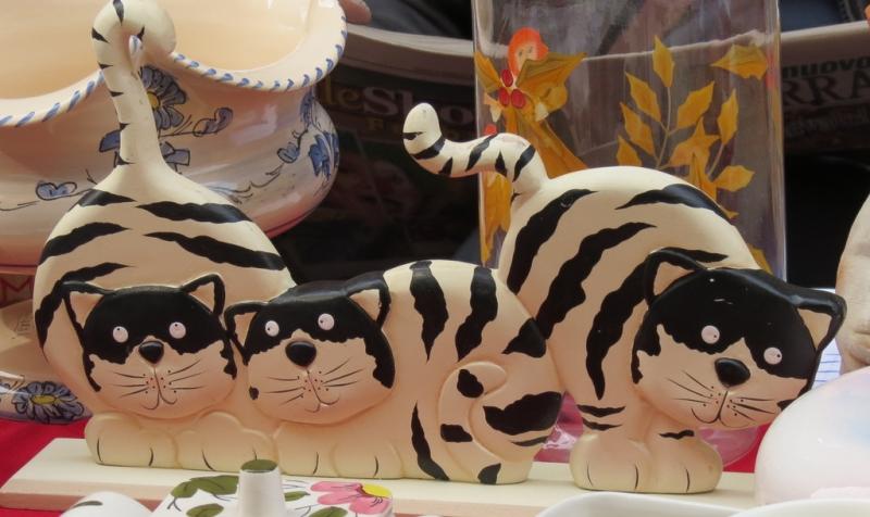 Домашние кошки, породы кошек фото