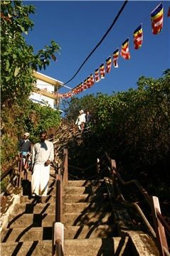 от Анурадхапуры до Хиккадувы. Отчет январь 2017