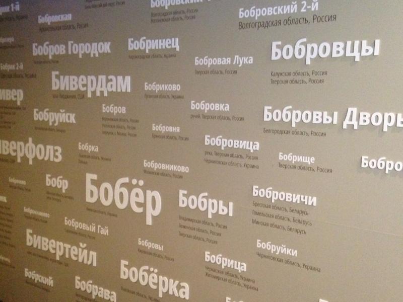 Длинные выходные или короткая поездка в Воронеж