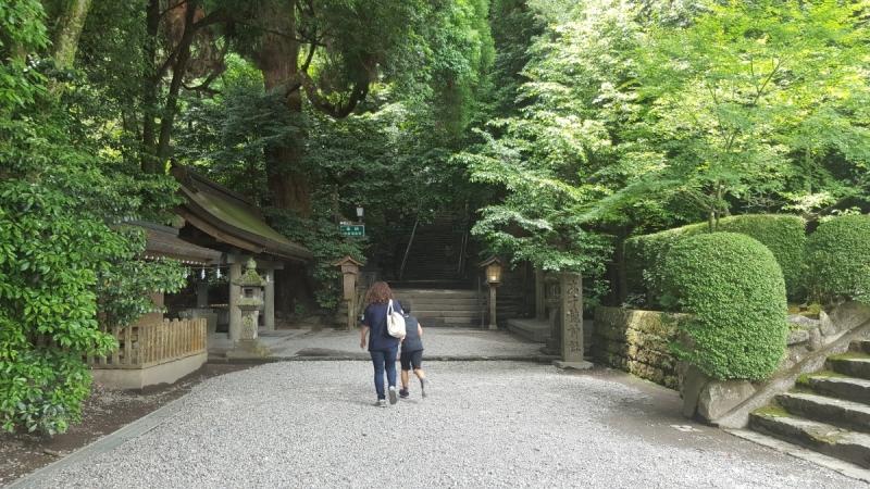 Япония, июнь 2017г.