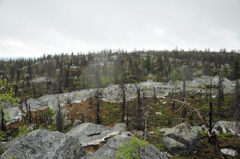 Жемчужины Карелии (гора вотовара + озеро Пизанец 2017)