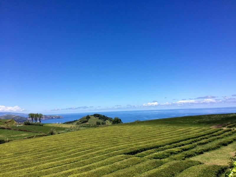 """Неделя на Азорских островах, или """"Как вложиться в 500 евро"""""""