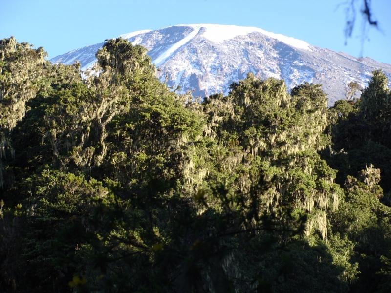 Занзибар+Килиманджаро