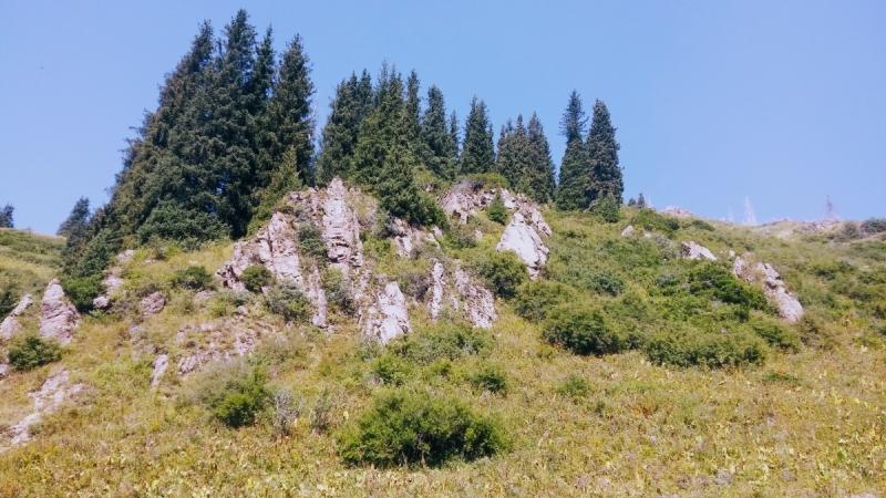 Алматы – Иссык-Куль в августе: прогулки по горам.  Солнце, воздух и вода – бонусом!