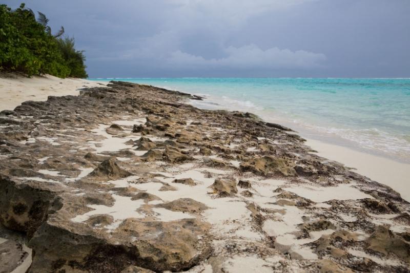 Остров Тодду (август-сентябрь 2016г.)