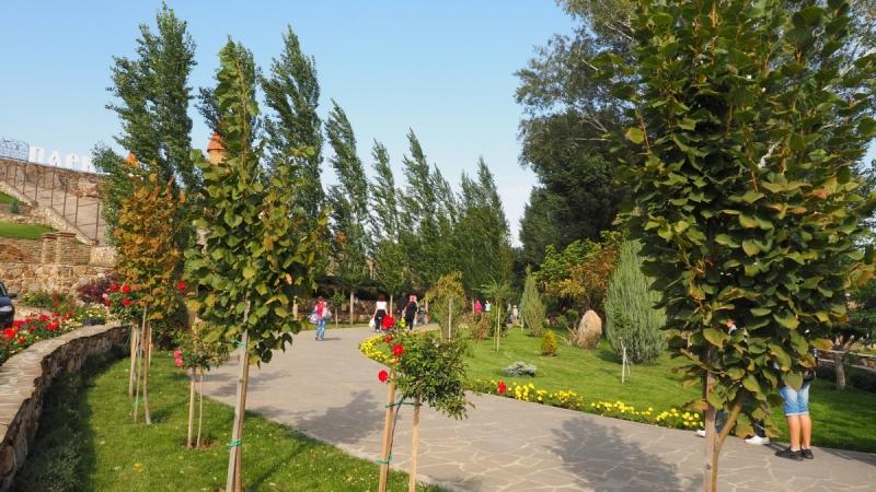 Парк Лога. Ростовская область.