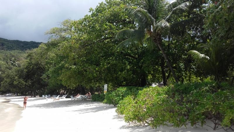 Малобюджетный отдых на Сейшелах в ноябре 2017. Рекомендую.