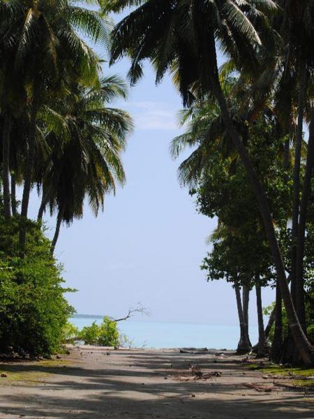 Мальдивские каникулы: рейдерский захват на о. Фуладу (Фулхадху, Fulhadhoo), выживание на необитаемом острове без еды и экономия на всем - декабрь 2017