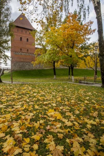 Брест, Лида, Мир и Несвиж, в золотую осень