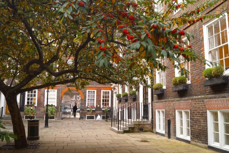 Великобритания в ноябре: рождественские елки, золотой листопад и розы в одном флаконе.