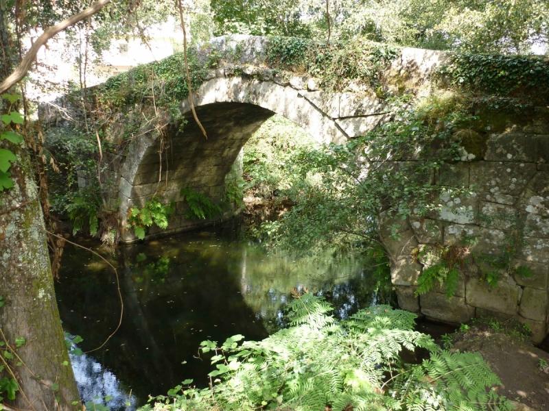 Camino Portugues, осень, старт из Браги.