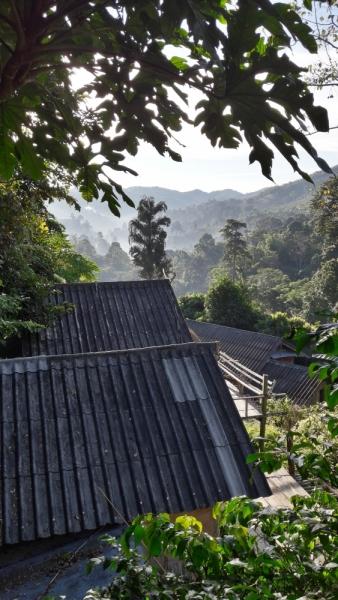 Чианг Май-Мае Салонг- Чианг Рай за 4 дня реально?