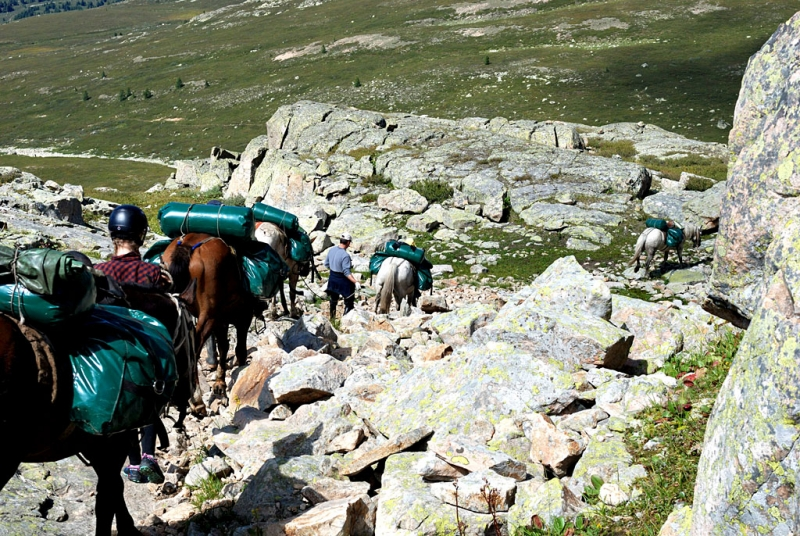 Конный поход по Горному Алтаю 2017 г